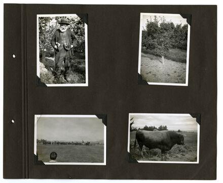 Barrow Family Photograph Album Page 41