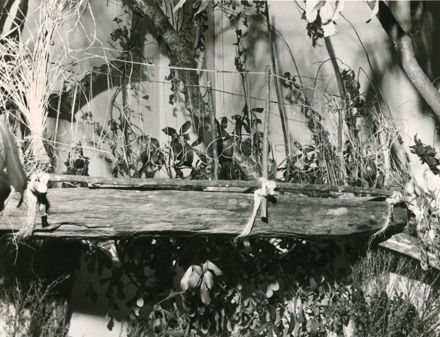 Māori trough, Manawatu Museum, Church Street