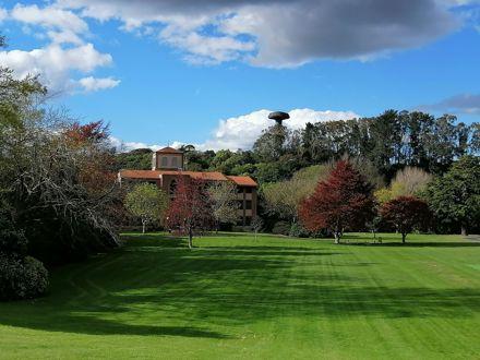 The oval, Massey University