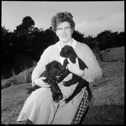 """""""A Farm Oddity"""" Twin Black Lambs"""