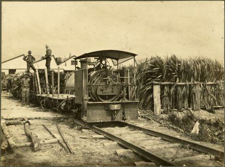 Locomotive at Miranui Flaxmill, near Shannon
