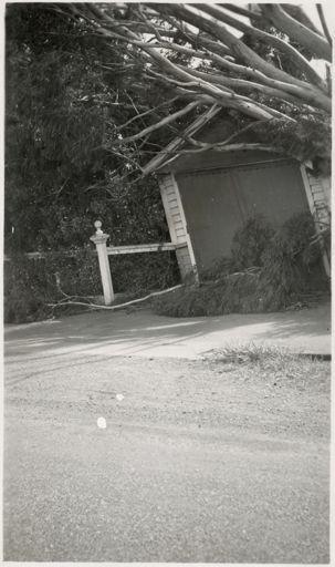 Scenes from Palmeston North, c1936 6