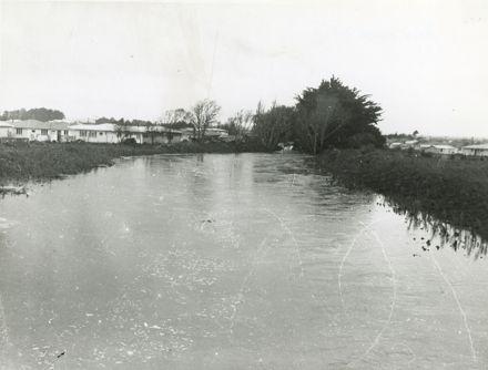 Mangaone Stream in flood