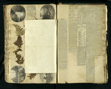 Louisa Snelson's Scrapbook - Page 92