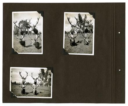 Barrow Family Photograph Album Page 24
