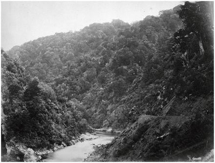 Manawatū Gorge