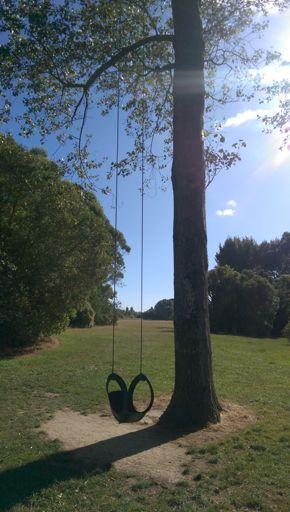 One Tree Swing