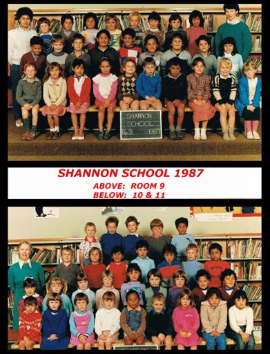 Shannon School 1987