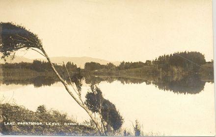 Lake Papatonga,Levin