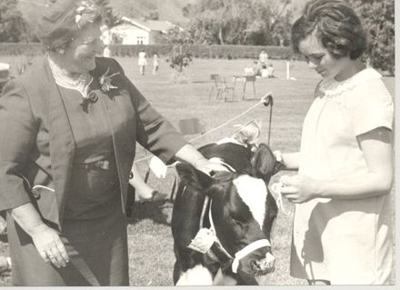 Girl (unidentified) with pet calf & prizewinners cup