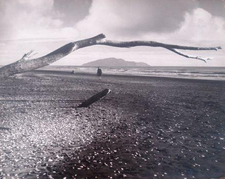 Kapiti Island viewed from Waikanae Beach ?
