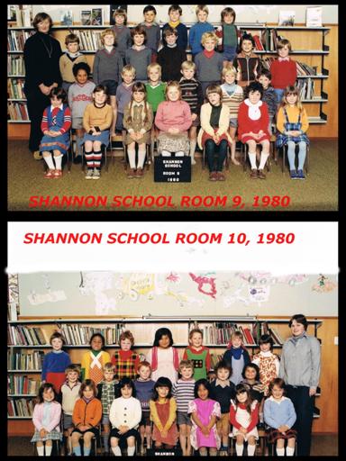 Shannon School 1980
