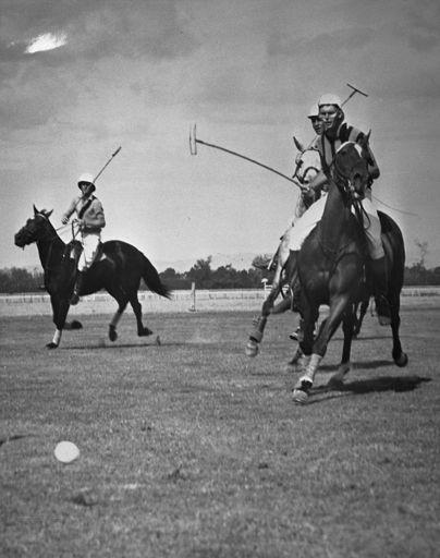 Polo Match at Johnstone Park
