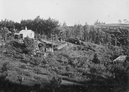 Halcombe Cottage, c. 1900's
