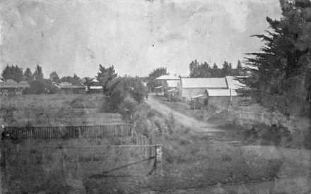 Halcombe, 1907