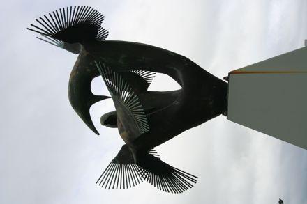 Squabbling Birds - Feilding Library