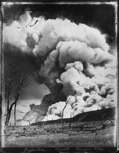 Pohangina Valley Bush Fire